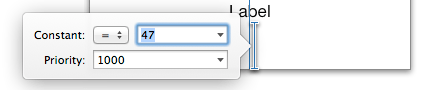 Directly editing an Auto Layout Constraint in the Interface Builder panel