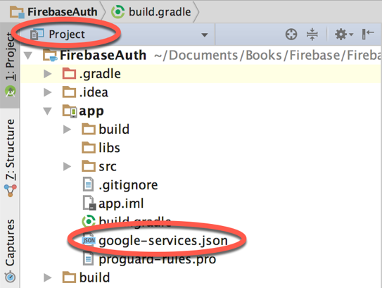 Firebase google services.png