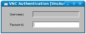vncviewer seeking a password to access a remote desktop
