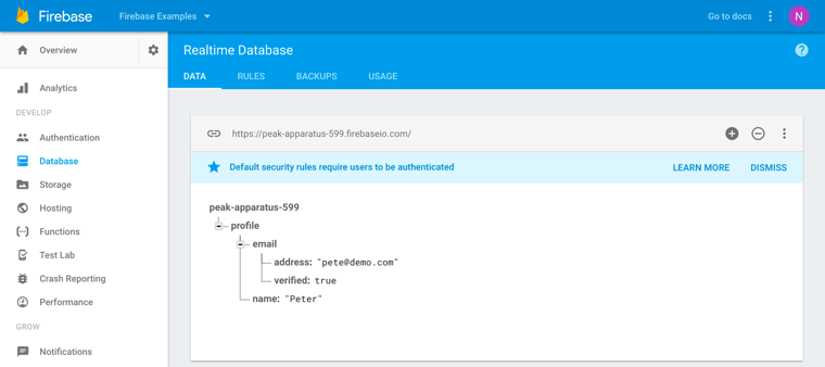 Firebase realtime database console.png
