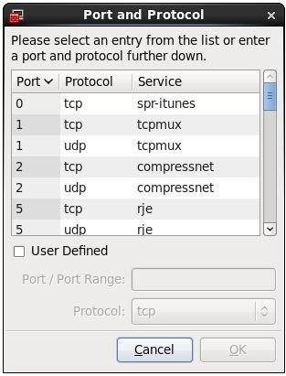 The RHEL 6 Firewall Ports and Protocols configuration screen