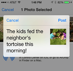 Ios 8 share view controller.png