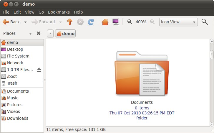 The Ubuntu 10.10 file manager at full zoom with captions enabled