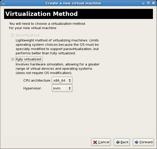 Configuring a KVM based fully virtualized guest